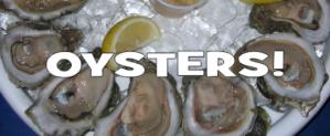 biminies-oysters
