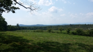 Grelen Views